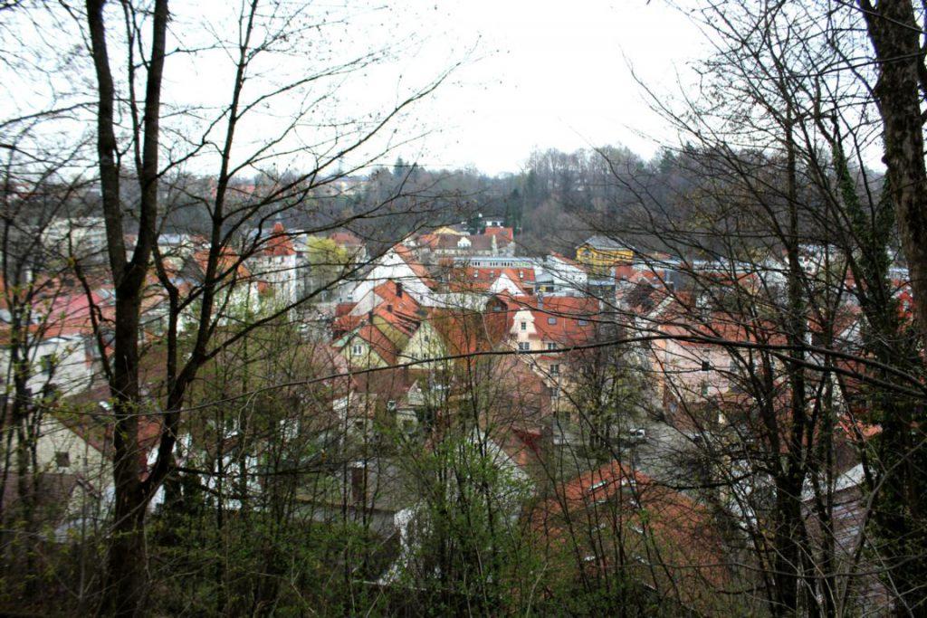 Blick auf Häuser um die Burghalde