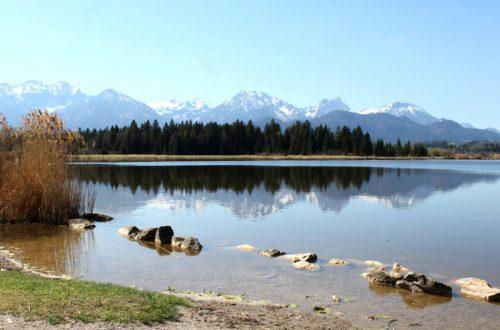 Ufer vom Hopfensee mit Blick auf die Alpen
