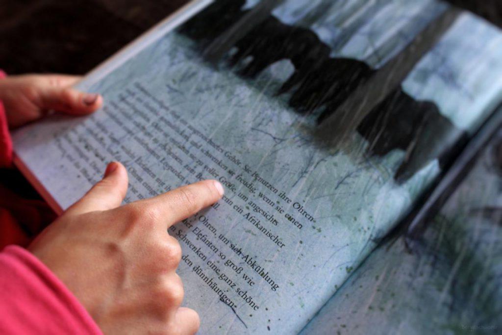 Kind liest eine Seite aus dem Buch Der Elefant von Jenni Desmond