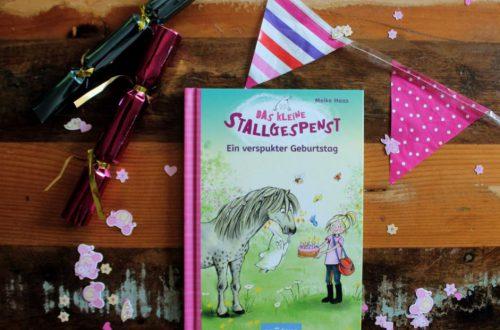 Das kleine Stallgespenst EIn verspukter Geburtstag - Das Buch auf einem Tisch
