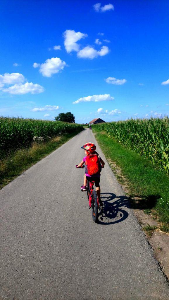 Fahrradtour mit Kindern durch Maisfelder