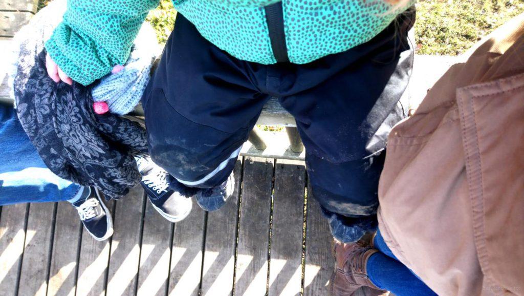 Blick auf drei Beinpaare