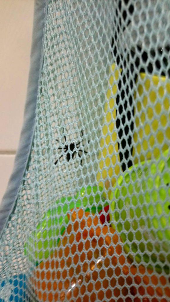 Spinne in Badespielzeug