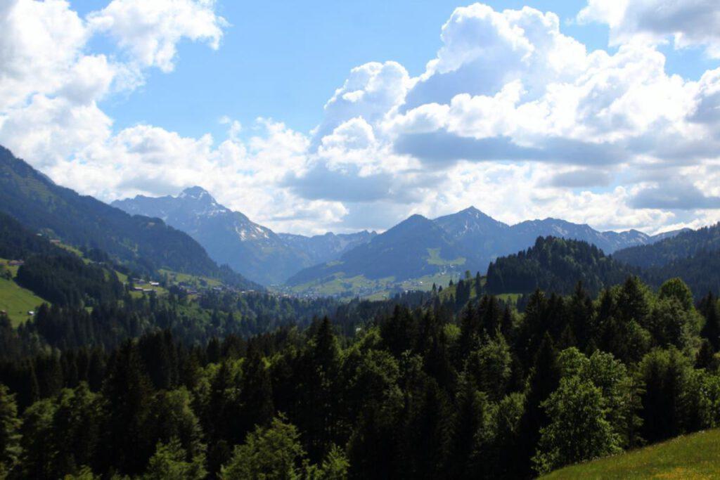 Ausblick Müllers Alp Alpe Allgäuer Alpen Berge Allgäu