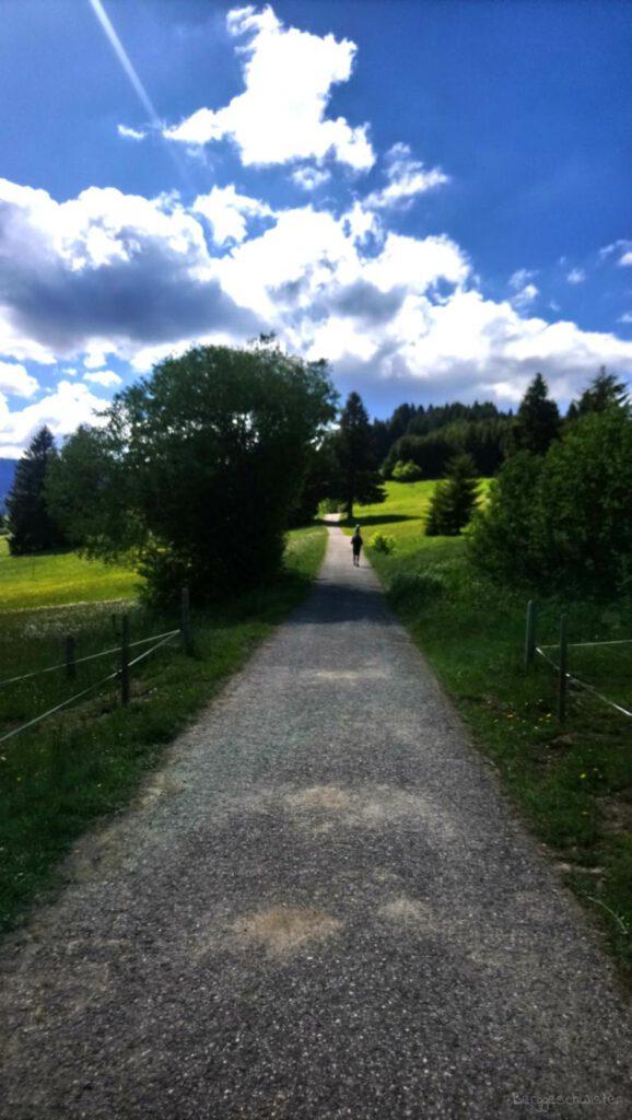 Breitachklamm Schlucht Wanderweg zum Parkplatz nach Müllers Alpe