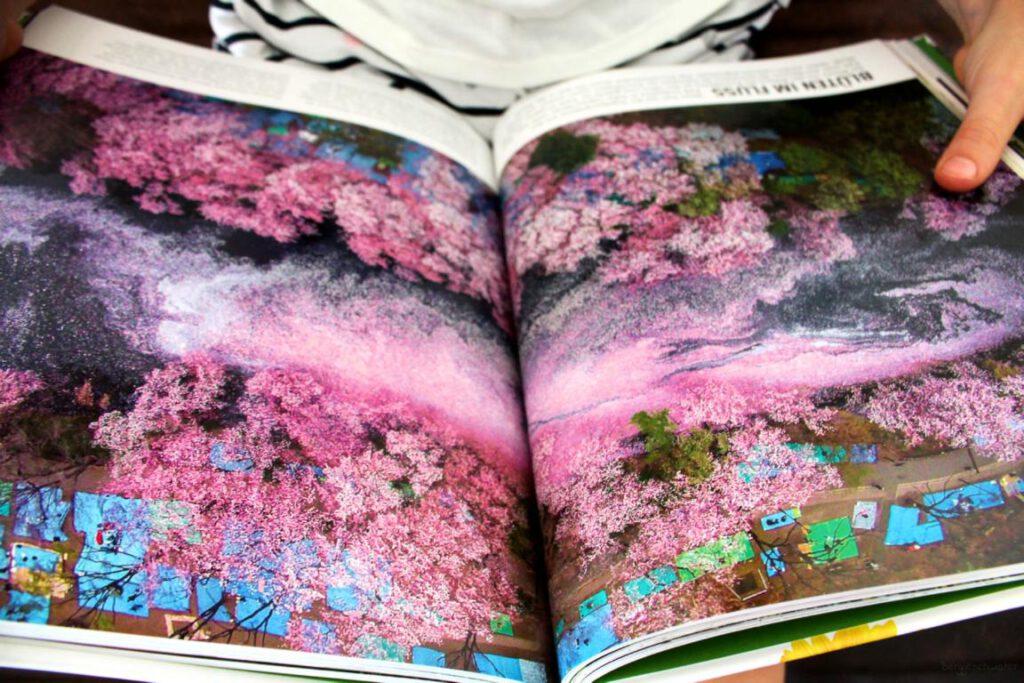 Seite aus dem Buch Pflanzen