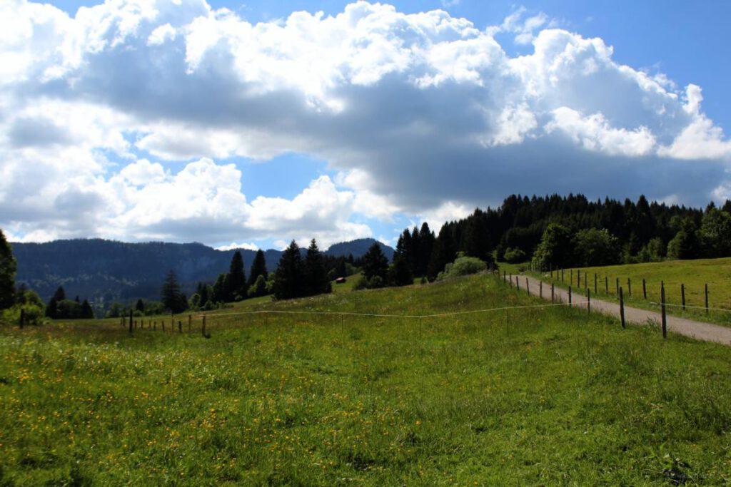 Wanderweg nach der Müllers Alpe Rundweg zum Parkplatz Breitachklamm