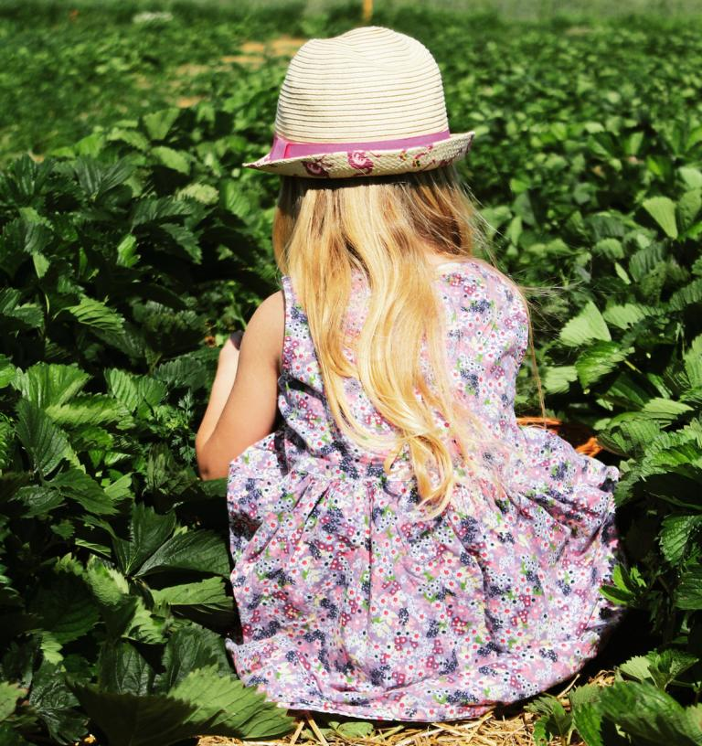 Mädchen im Erdbeerfeld