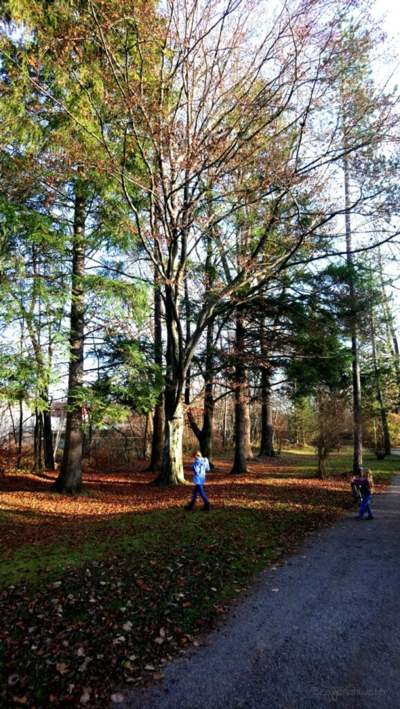 zwei Mädchen an einem Baum