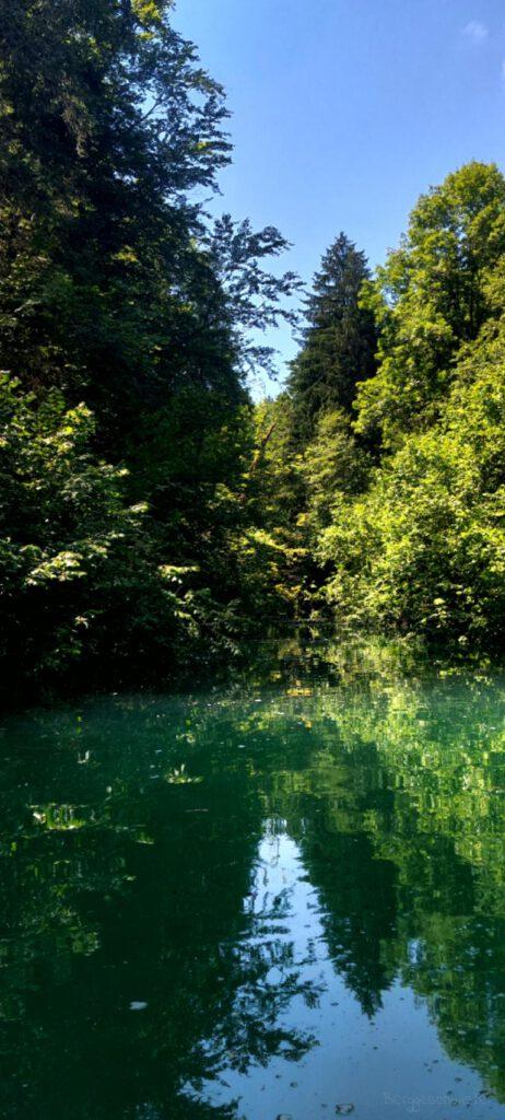 Fluss im Ostallgäu
